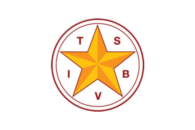 TSBVI Logo.